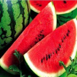Cheap-water-font-b-melon-b-font-font-b-seeds-b-font-mini-garden-vegetables-font